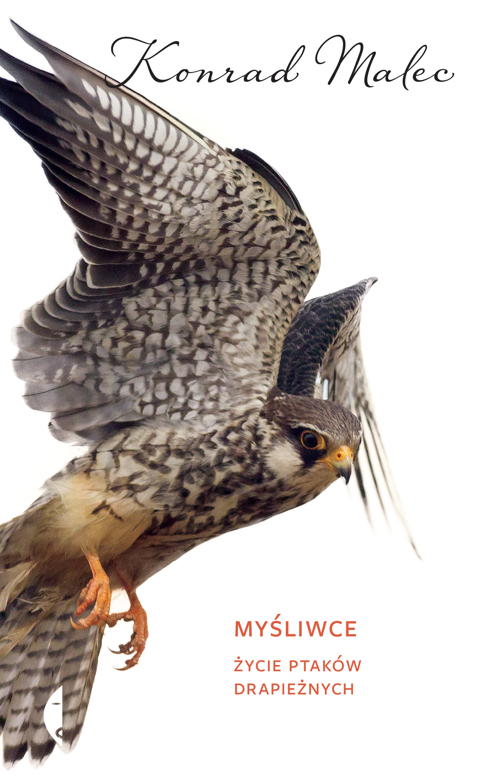 Myśliwce. Życie ptaków drapieżnych