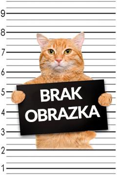 Społeczności mezolityczne Pojezierza Chełmińsko-Dobrzyńskiego