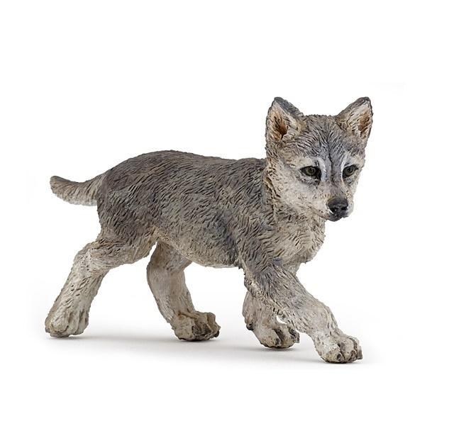 Wilk młody