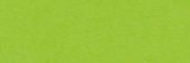 Brystol kolorowy Happy Color 170g A4 25 arkuszy jasnozielony